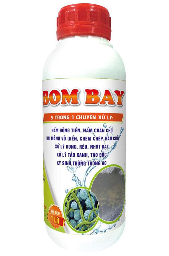 BOM BAY