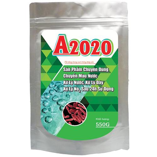 A20201